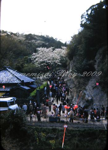 衣笠山公園53.jpg