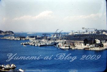 横須賀本港2.jpg
